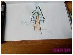 水杉树的简笔画画法图片