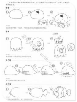 画海洋生物的简单画法