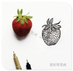 逼真的草莓线描简笔画