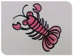 三幅可爱小虾简笔画图片