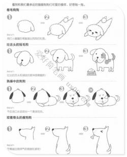 可爱的小狗和小猫简笔画画法教程