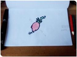 萝卜怎么画简笔画