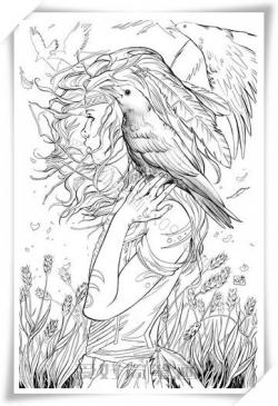 很漂亮的动漫女生与鹰简笔画