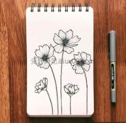 漂亮的花朵简笔画