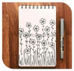 漂亮花朵的简笔画
