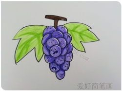 可爱的卡通葡萄简笔画画法
