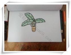 芭蕉树简笔画步骤