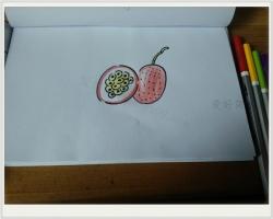 100种水果简笔画步骤之百香果简笔画教程