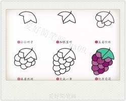 六步画出葡萄简笔画的画法