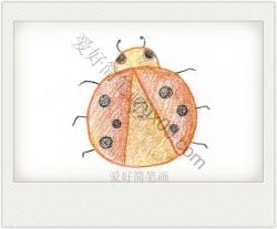 七星瓢虫简笔画 可爱