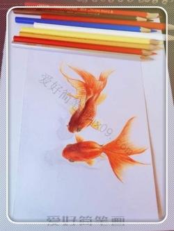 立体彩铅画动物-金鱼简笔画