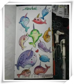 可爱彩色独角鲸的简笔画大全