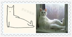 可爱的创意猫咪简笔画大全
