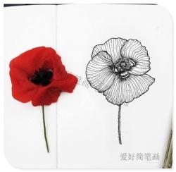 漂亮花朵简笔画大全