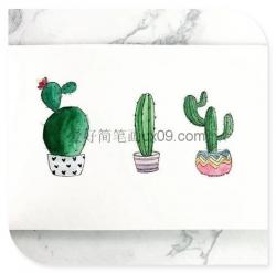 清新小盆栽简笔画图片大全 超可爱
