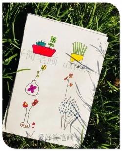 简单又好看的植物简笔画