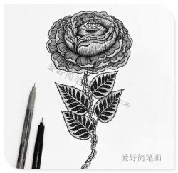 创意简笔画黑白玫瑰花