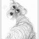 简单的线条创意小狗简笔画