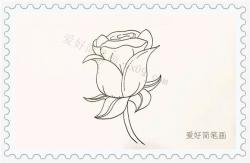 一笔一画教我画玫瑰花