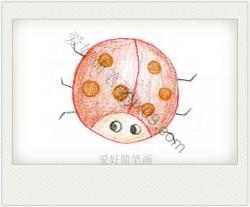 七星瓢虫画画图片涂色