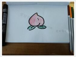 桃子的画法简笔画图片